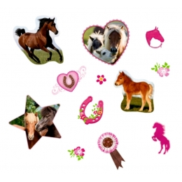 Stickers Autocollants Cheval