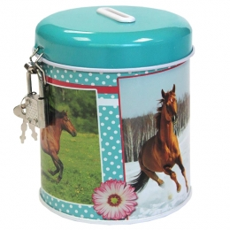 Tirelire Cheval Passion Turquoise