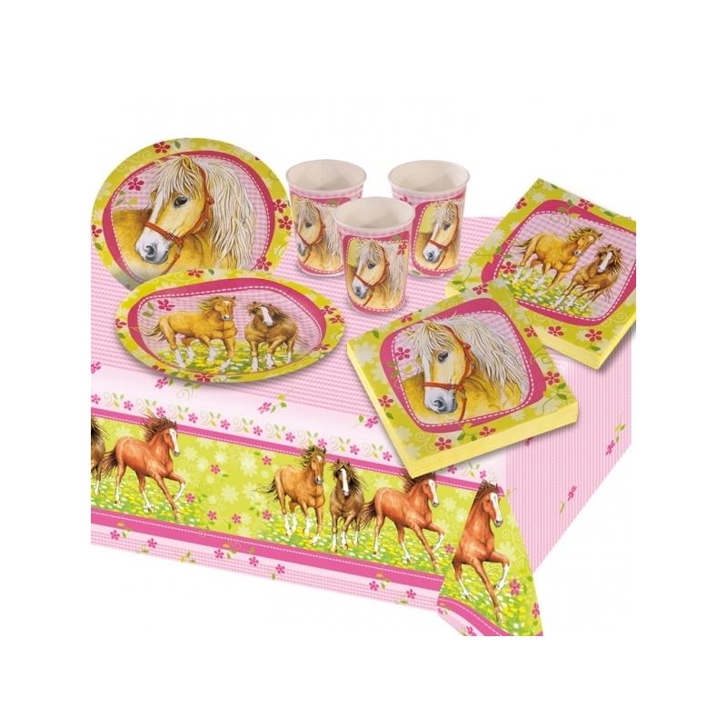 kit go ter anniversaire cheval 6 enfants. Black Bedroom Furniture Sets. Home Design Ideas