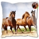 Coussin Motif Cheval