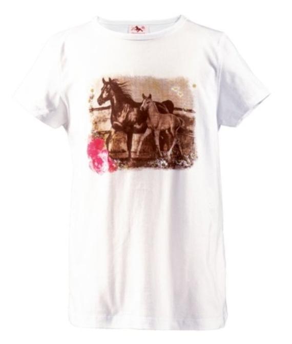Tee Shirt Jument Et Son Poulain