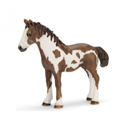 Figurine Yearling Pinto Schleich