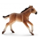 Figurine Poulain Mustang Schleich