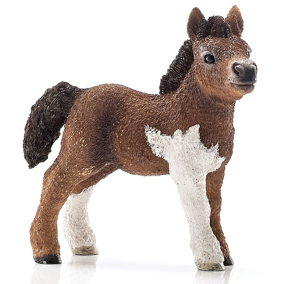 Figurine Poulain Shetland schleich