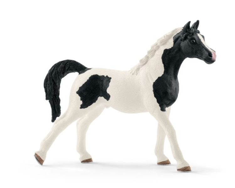 Figurine Etalon Pintabian Schleich