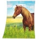 Couverture Polaire Cheval Au Galop