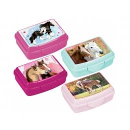 Mini Boîte à Goûter Amis Des chevaux