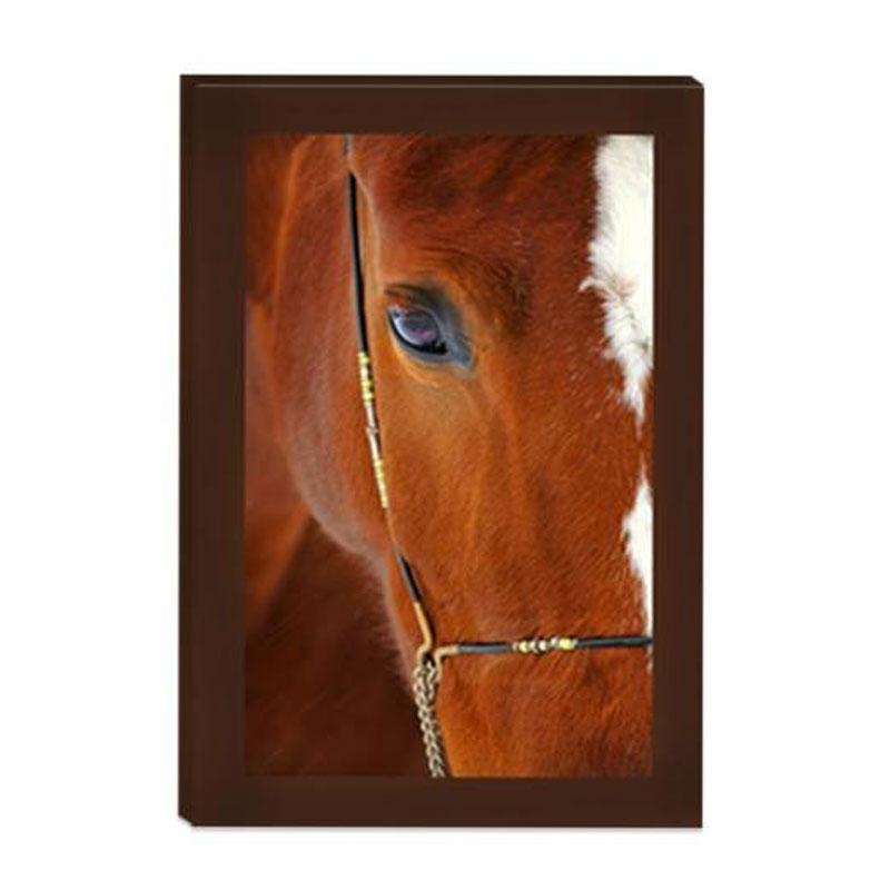 Grande Toile Portrait De Cheval 40X90