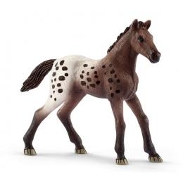 Figurine Poulain Appaloosa Schleich