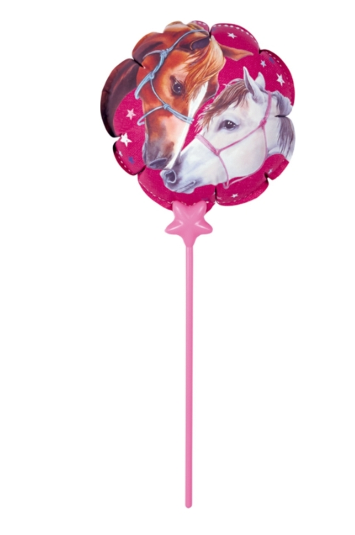 Ballon Aluminium Amis Des Chevaux
