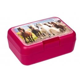 Boîte à Goûter Cheval