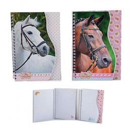 Horses Dreams: Carnet Cheval