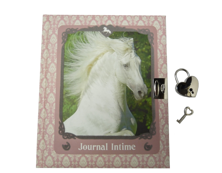 Horses Dreams: Journal Intime Cheval